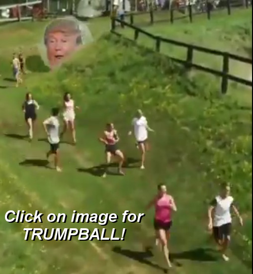 TrumpBall.jpg